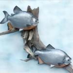 Piranha (Double Trouble!)