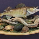 Walleye wall pedestal scene